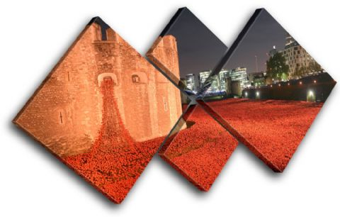Tower of London Poppies City - 13-2234(00B)-MP19-LO